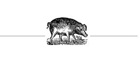 pig-divider